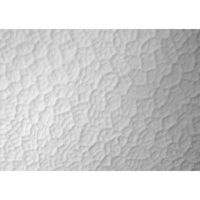 Ceiling 01